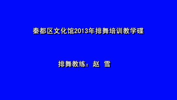 《亚搏娱乐网站文化馆2013年排舞培训教学碟》